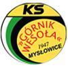 Klub Sportowy KS Górnik Wesoła